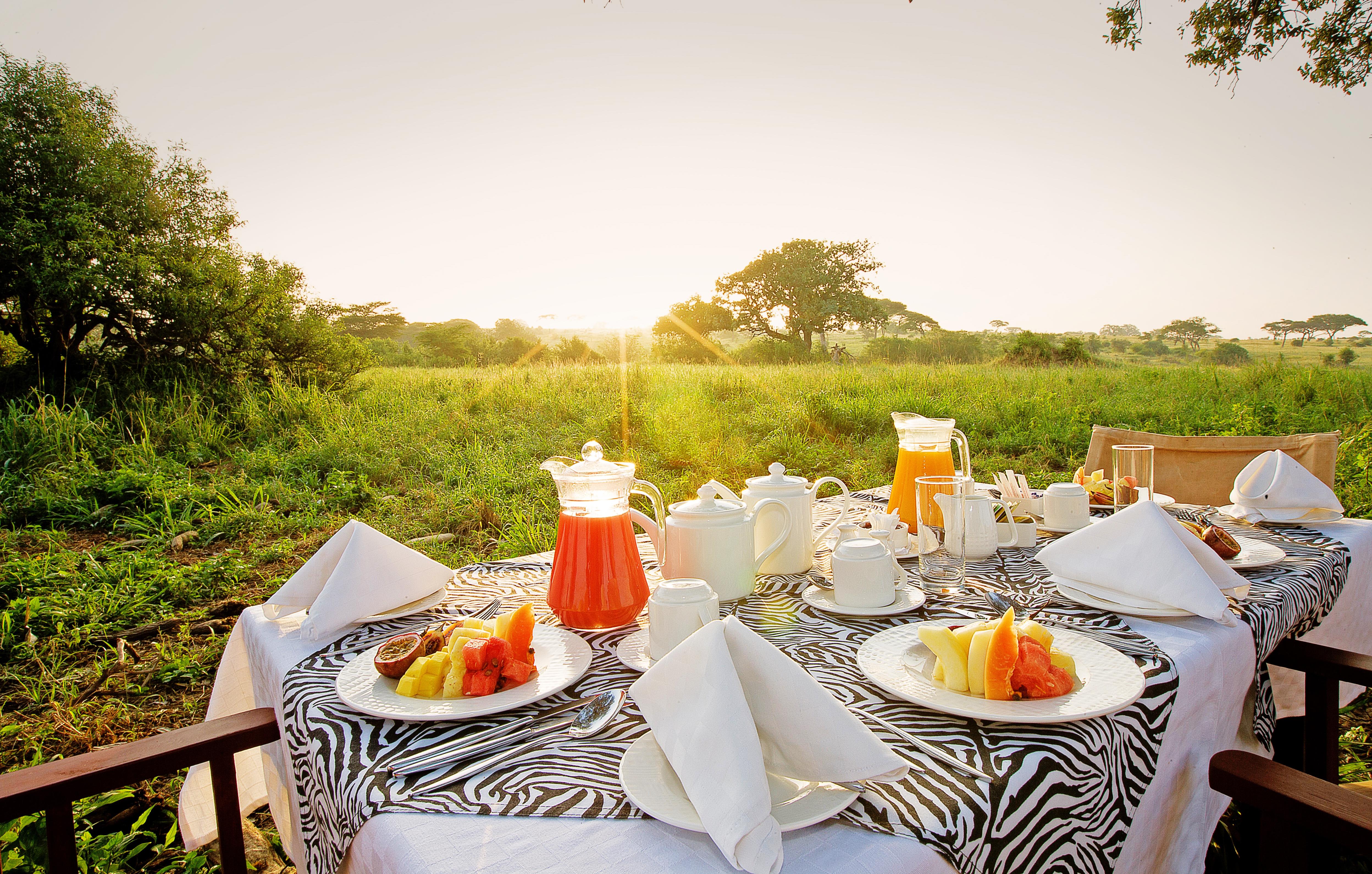 Tarangire bush breakfast